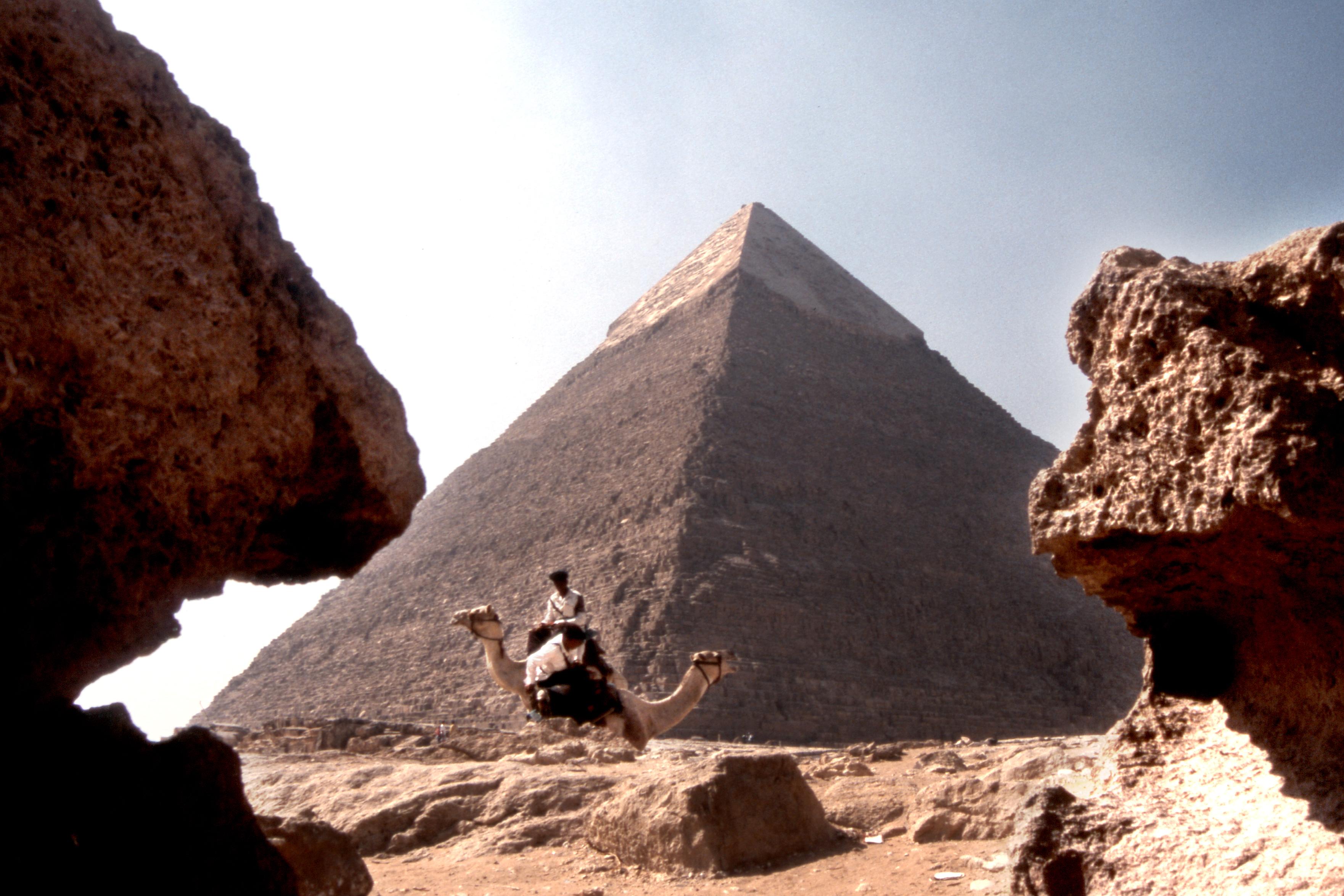 cairo piramides camello