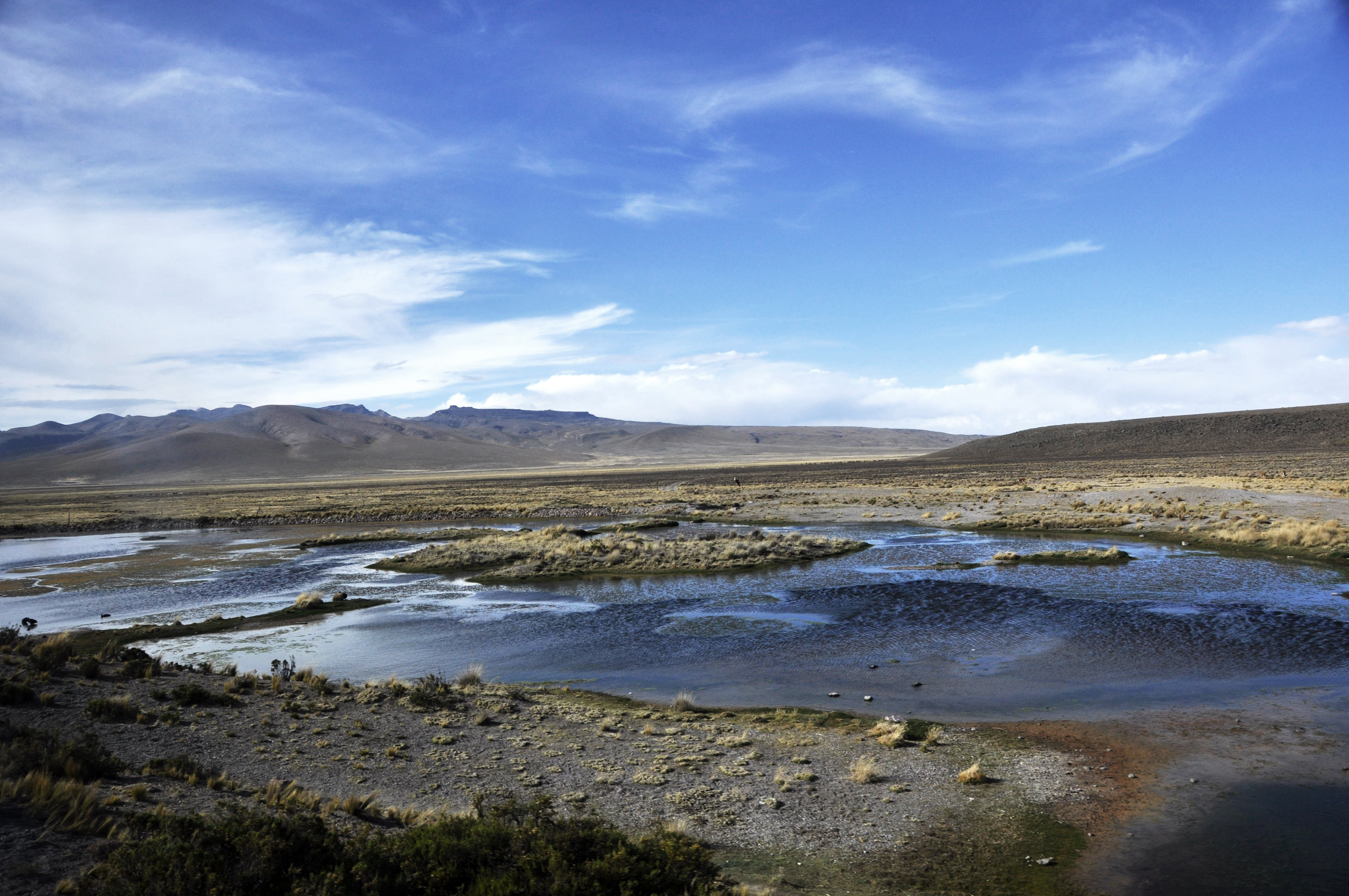 Peru 2013 Cañon del Colca10