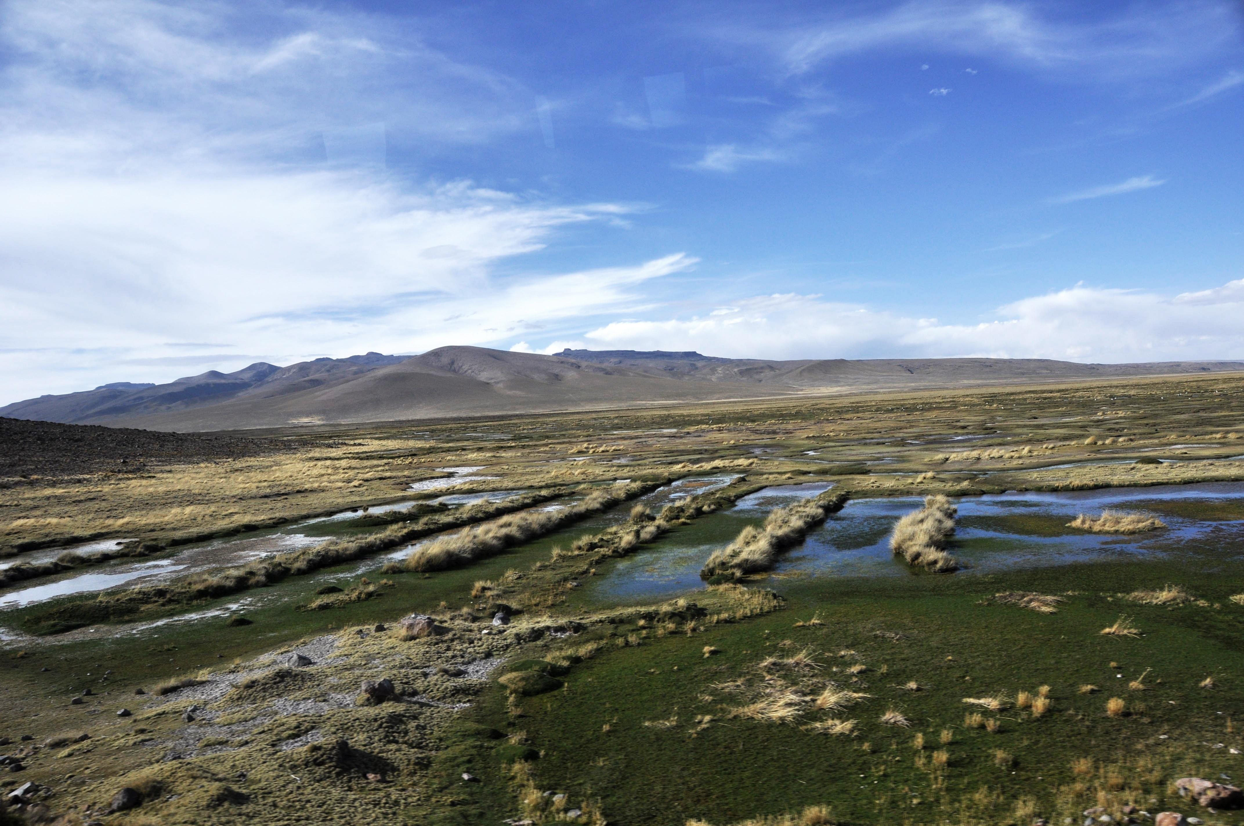 Peru 2013 Cañon del Colca12