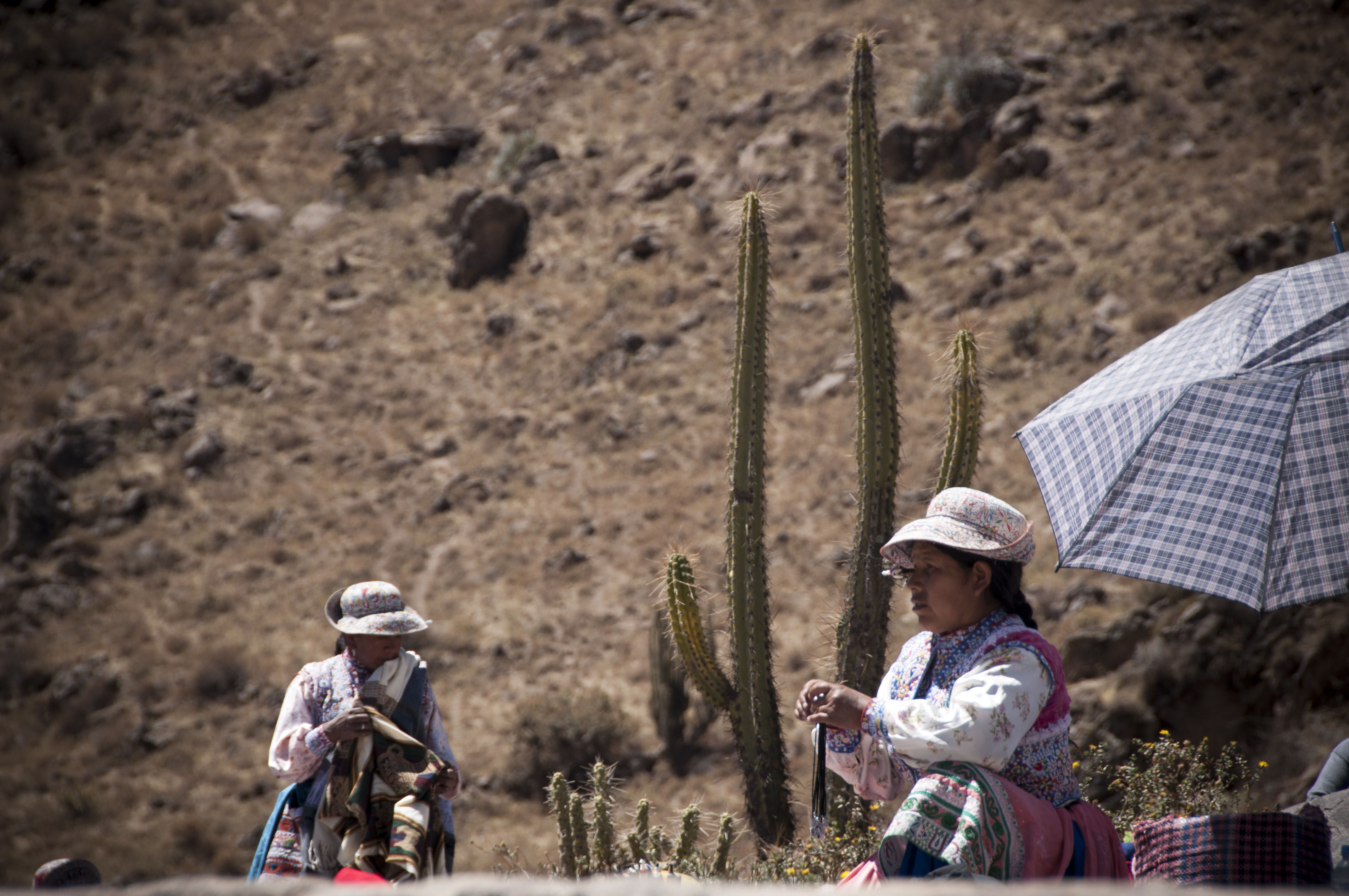 Peru 2013 Cañon del Colca Mirador del condor3