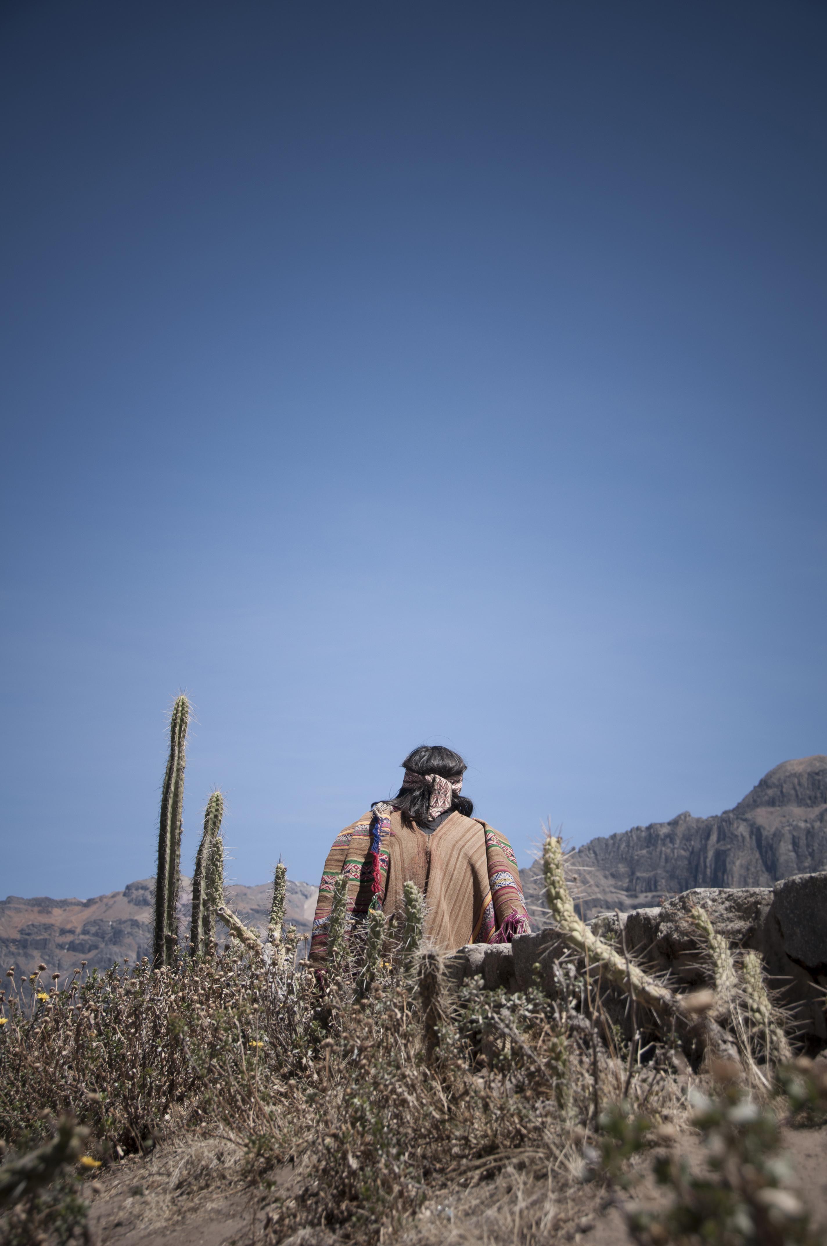 Peru 2013 Cañon del Colca Mirador del condor5
