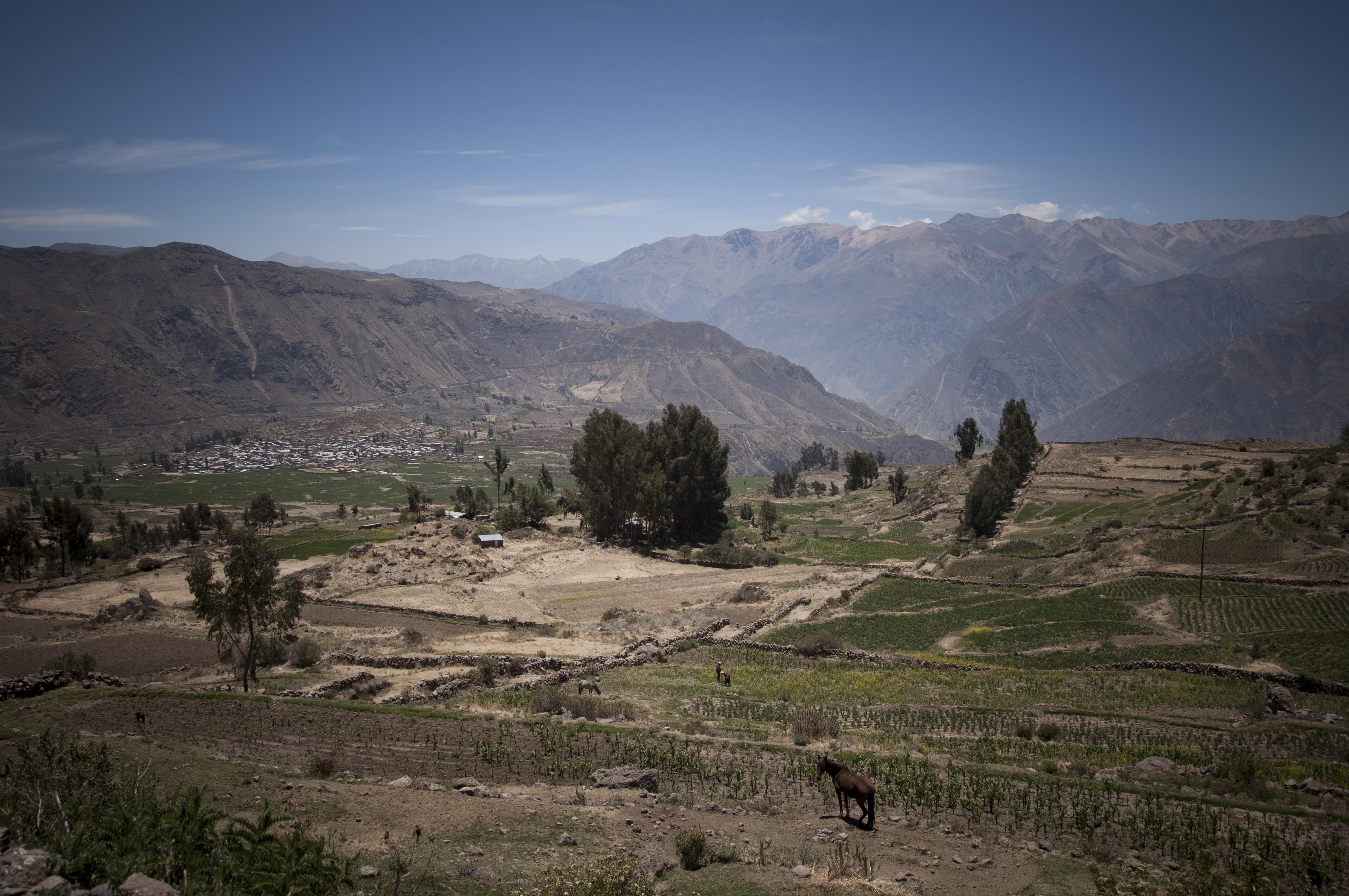 Peru 2013 Cañon del Colca_ Cabanaconde6