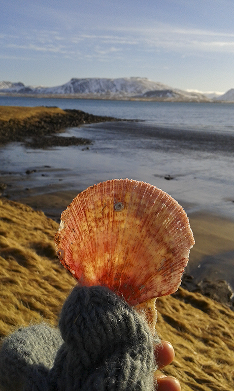 Islandia Snaefellsnes Peninsula_ Kirkjufellconcha congelada