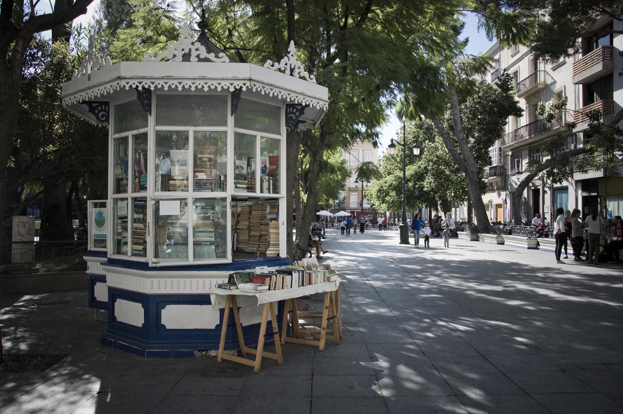 Cadiz-centro-historico-libreria-sonsoles-lozano