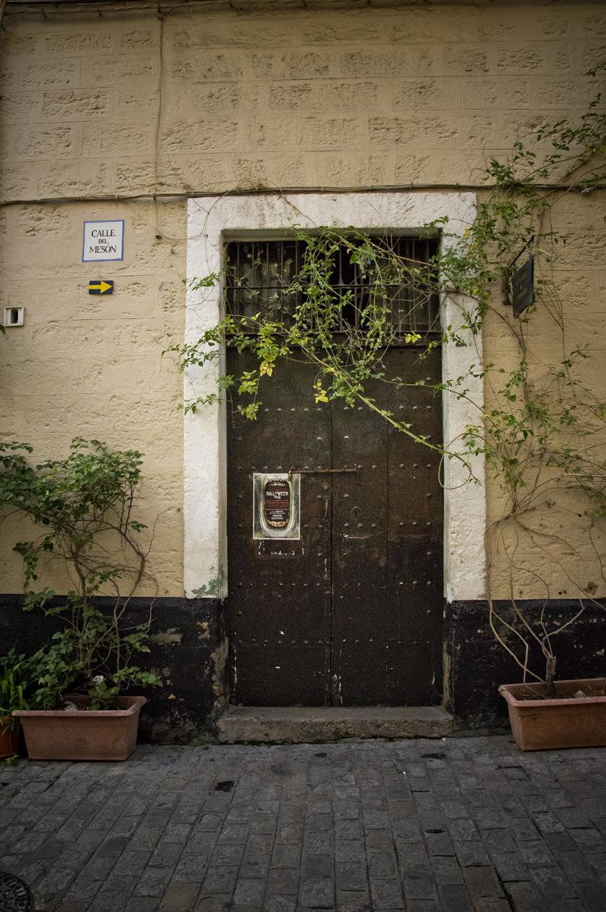 Cadiz-portales-sonsoles-lozano