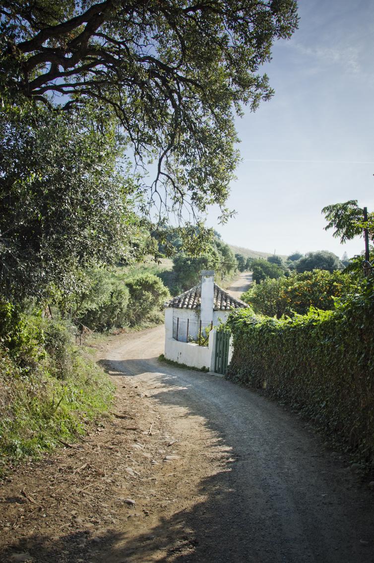 Ruta-senderismo-Algeciras-Tarifa-camino-interior4