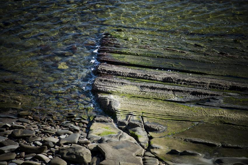 Ruta-senderismo-Algeciras-Tarifa-colada-de-la-costa-texturas