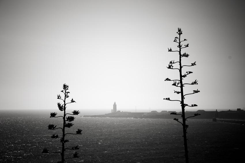 Ruta-senderismo-Algeciras-Tarifa-paisaje-pitas