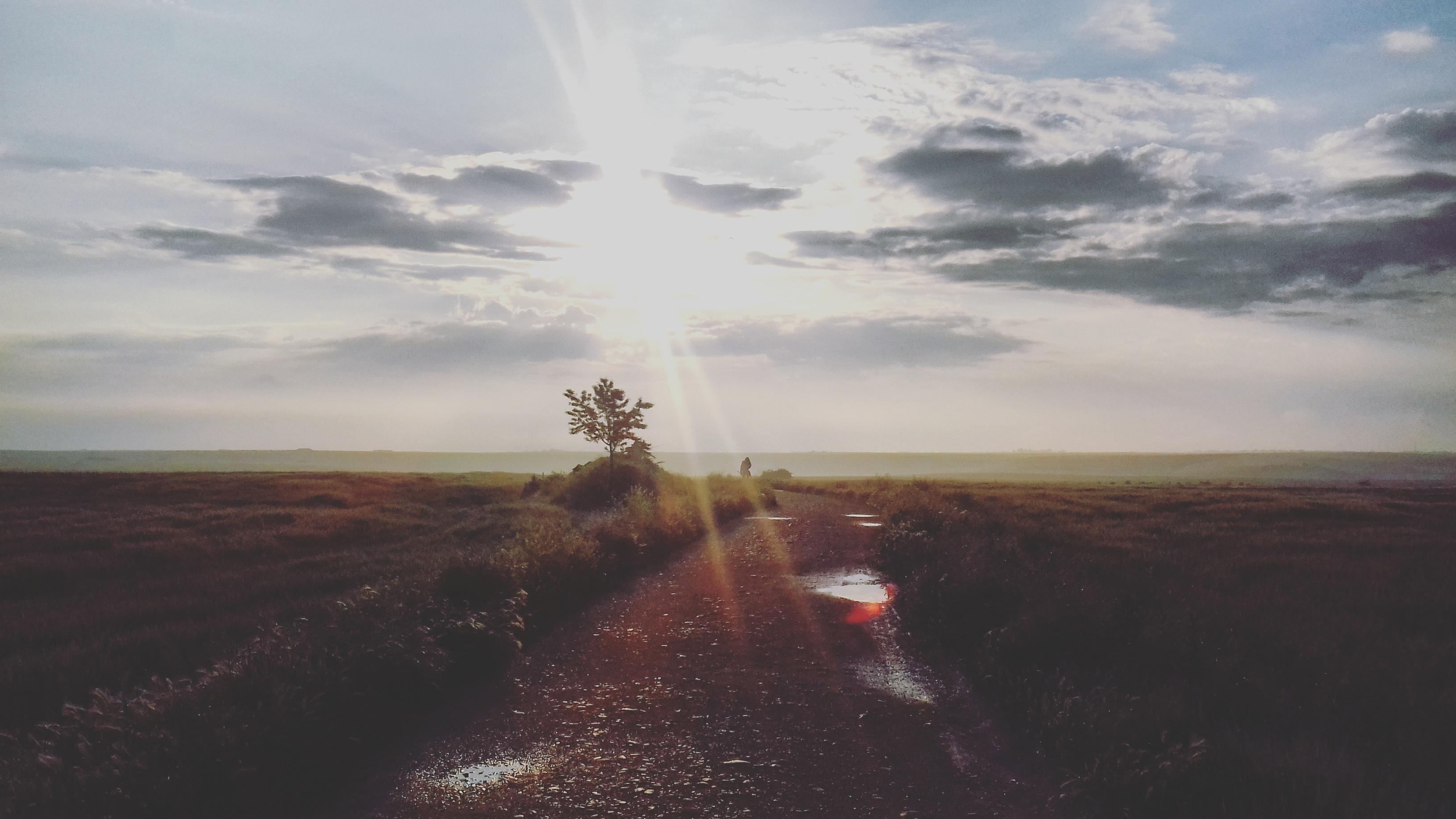camino-de-santiago-camino-frances-paisaje-castilla-sonsoles-lozano8