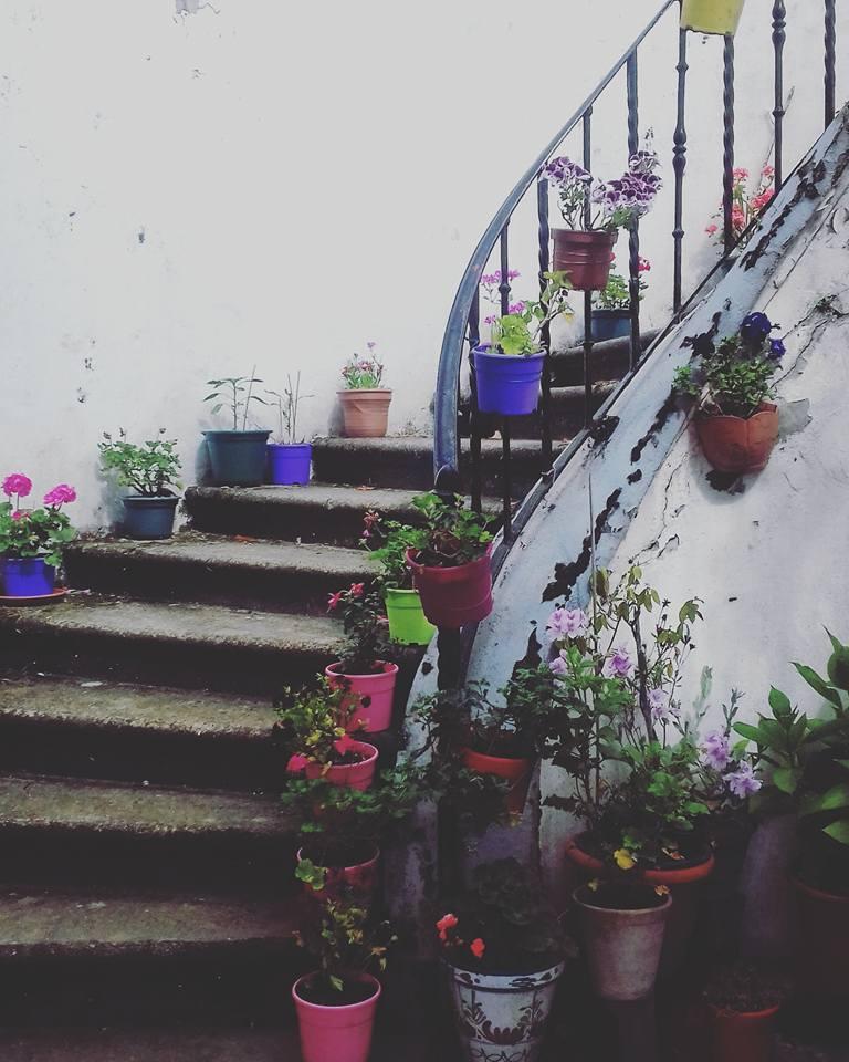 camino-de-santiago-camino-primitivo-asturias-sonsoles-lozano-9
