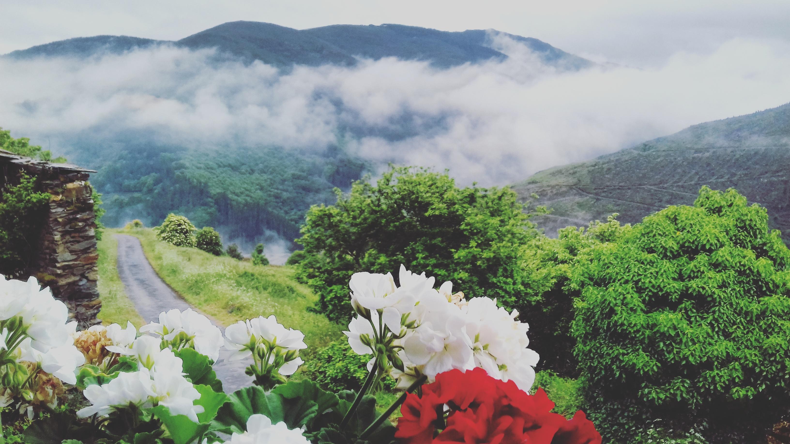 camino-de-santiago-camino-primitivo-sonsoles-lozano-37